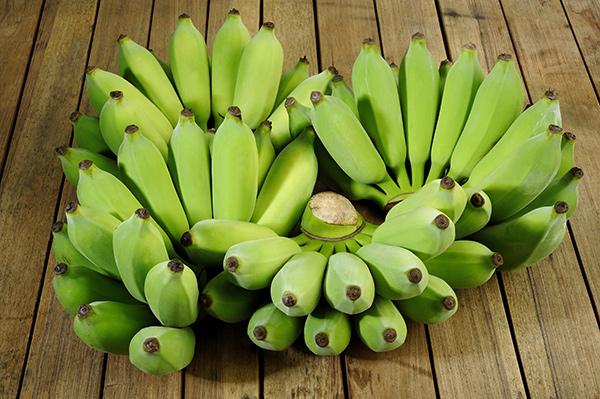 0406-biomassa-banana-verde