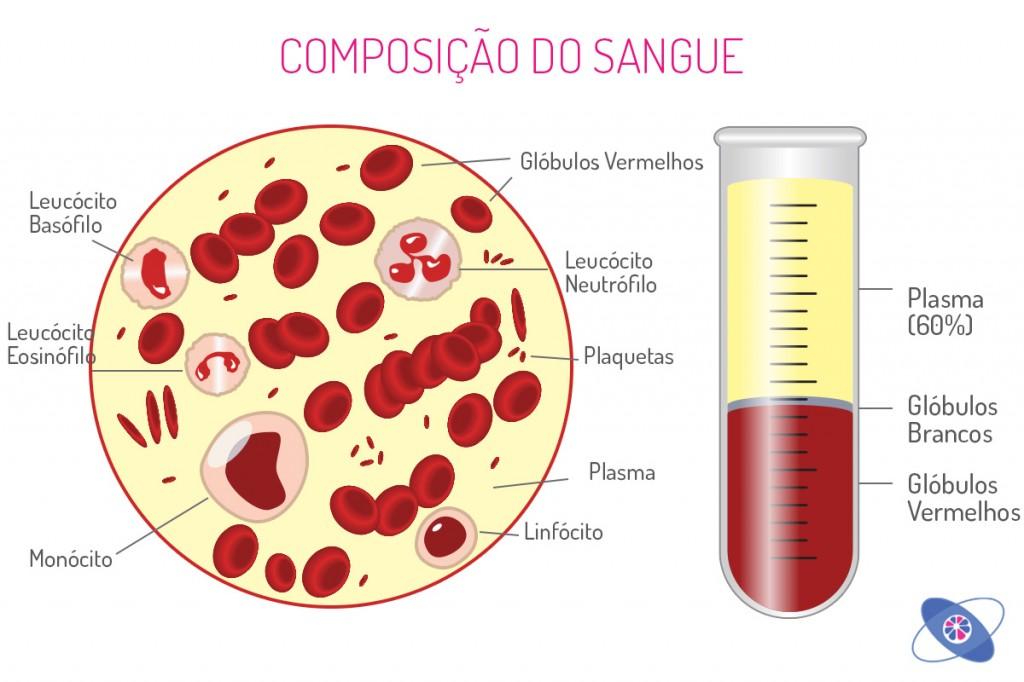 manual-anemia-02